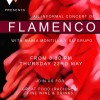 Sacarello's Flamenco Night